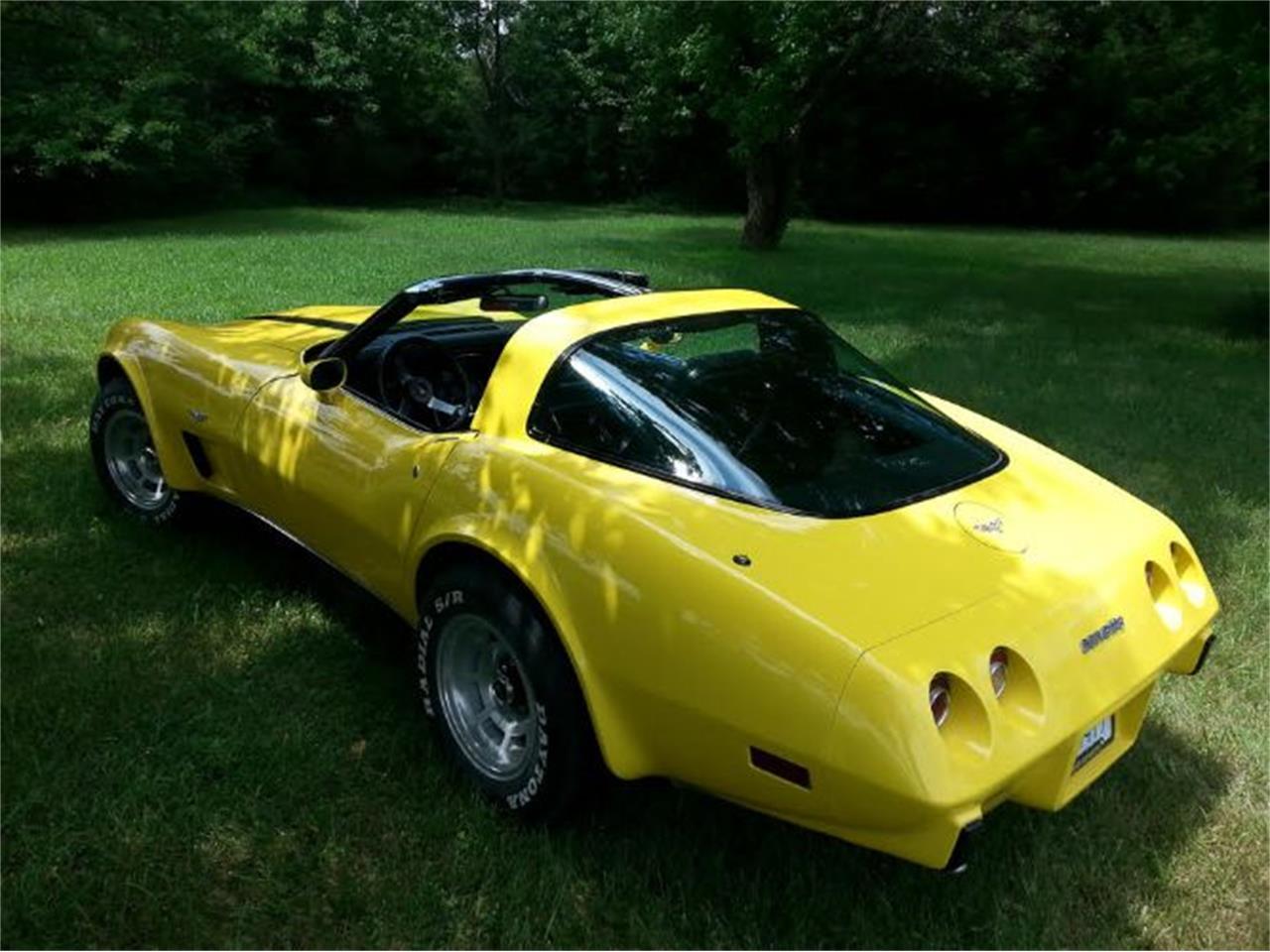 1979 Chevrolet Corvette (CC-1423636) for sale in Cadillac, Michigan