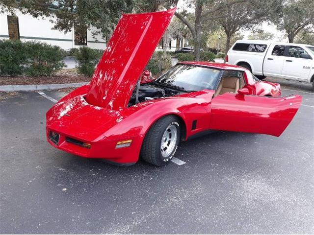1981 Chevrolet Corvette (CC-1423637) for sale in Cadillac, Michigan