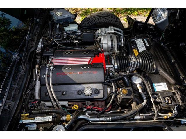 1996 Chevrolet Corvette (CC-1424203) for sale in Punta Gorda, Florida