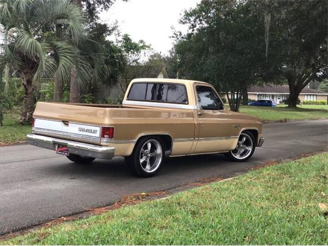 1984 Chevrolet C10 (CC-1424249) for sale in Cadillac, Michigan