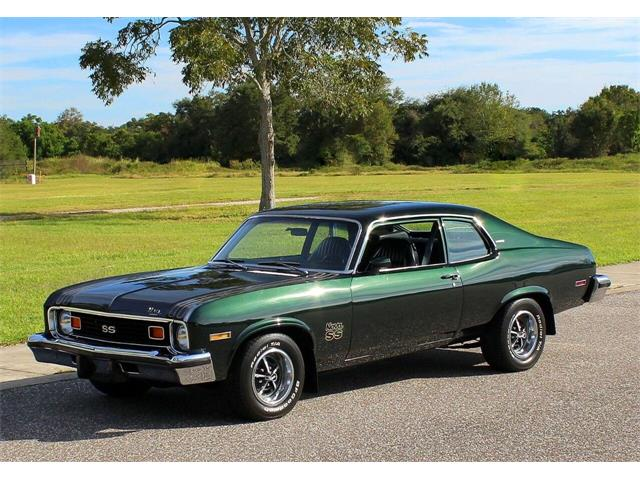 1974 Chevrolet Nova (CC-1424637) for sale in Clearwater, Florida
