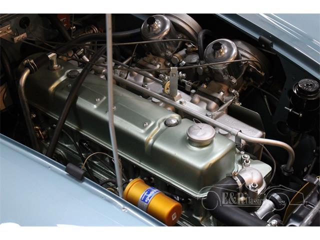 1965 Austin-Healey 3000 Mark III (CC-1424757) for sale in Waalwijk, Noord Brabant