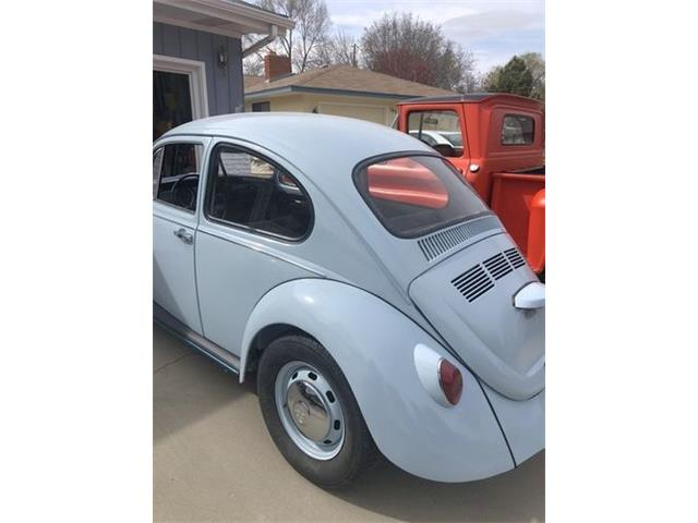 1969 Volkswagen Beetle (CC-1424900) for sale in Cadillac, Michigan