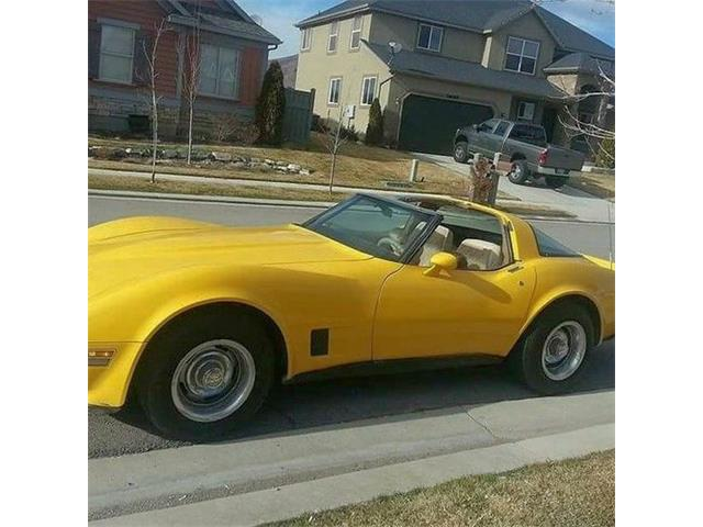 1981 Chevrolet Corvette (CC-1424910) for sale in Cadillac, Michigan
