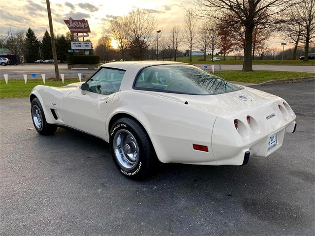 1978 Chevrolet Corvette (CC-1425310) for sale in Paris , Kentucky
