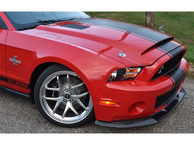 2010 Shelby GT500 (CC-1425783) for sale in Spencer, West Virginia