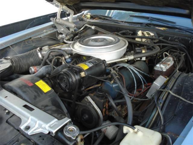 1979 Lincoln Mark V (CC-1426328) for sale in Tampa, Florida
