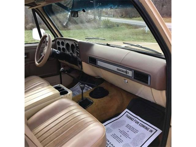 1978 Chevrolet K-10 (CC-1426563) for sale in Cadillac, Michigan