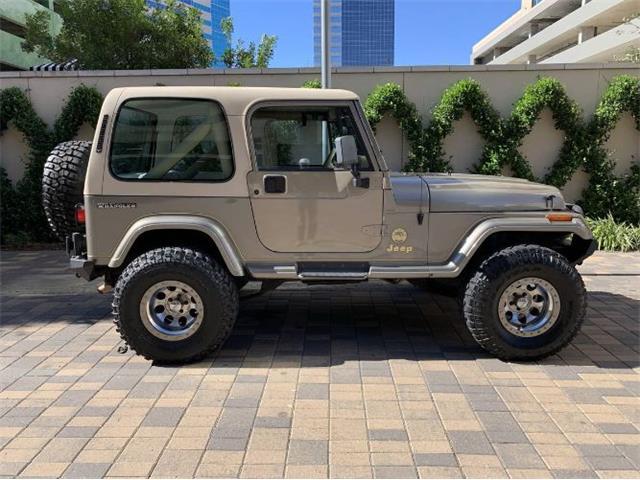 1989 Jeep Wrangler (CC-1426568) for sale in Cadillac, Michigan
