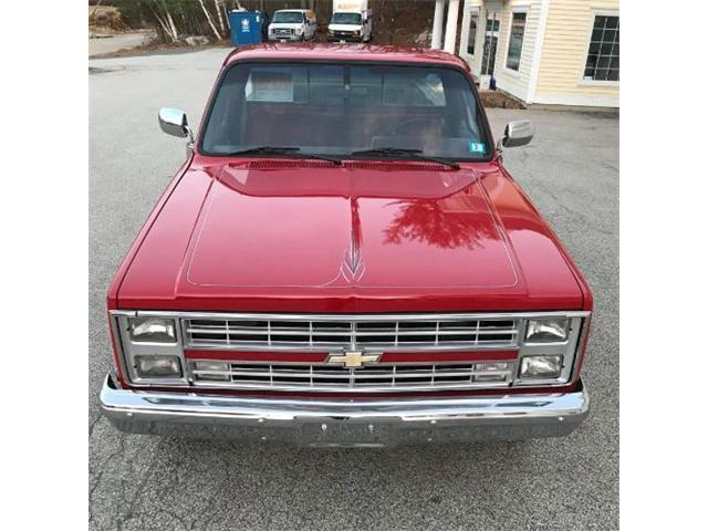 1987 Chevrolet Custom (CC-1426592) for sale in Cadillac, Michigan