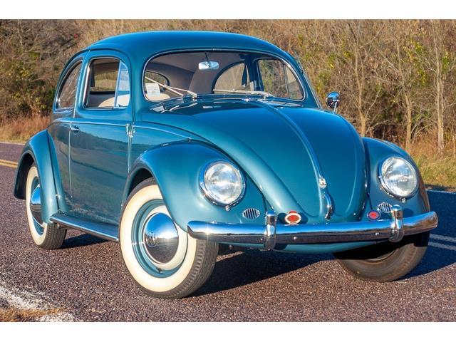 1954 Volkswagen Beetle (CC-1426997) for sale in St. Louis, Missouri