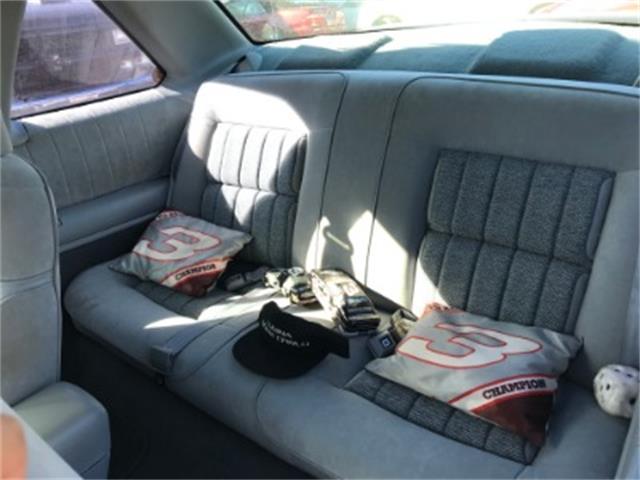 1991 Chevrolet Lumina (CC-1427112) for sale in Miami, Florida