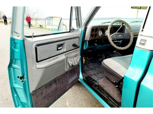 1980 Chevrolet C10 (CC-1427418) for sale in Cadillac, Michigan