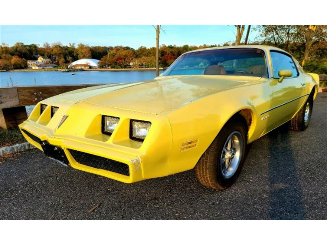 1979 Pontiac Firebird (CC-1427436) for sale in Cadillac, Michigan