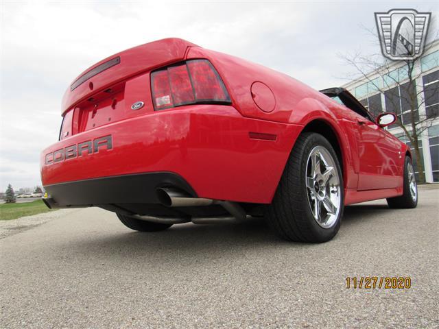 2004 Ford Cobra (CC-1427777) for sale in O'Fallon, Illinois