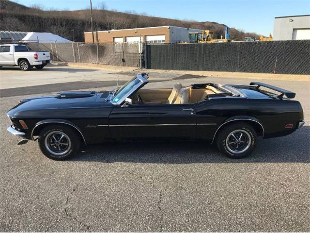 1970 Ford Mustang (CC-1428158) for sale in Cadillac, Michigan