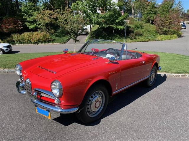 1965 Alfa Romeo Spider (CC-1428186) for sale in Cadillac, Michigan