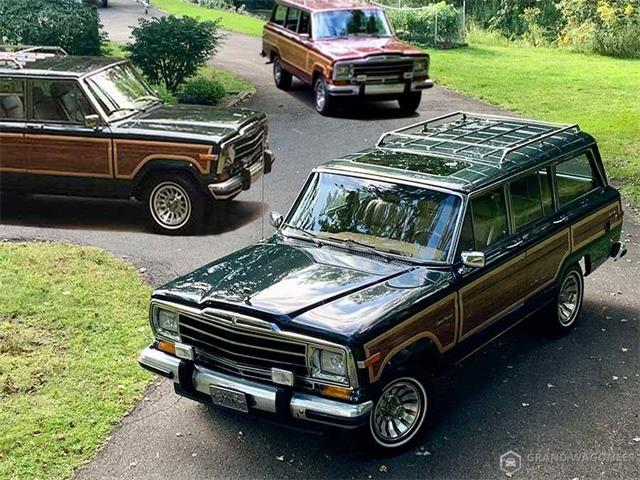 1985 Jeep Grand Wagoneer (CC-1428548) for sale in Bemus Point, New York