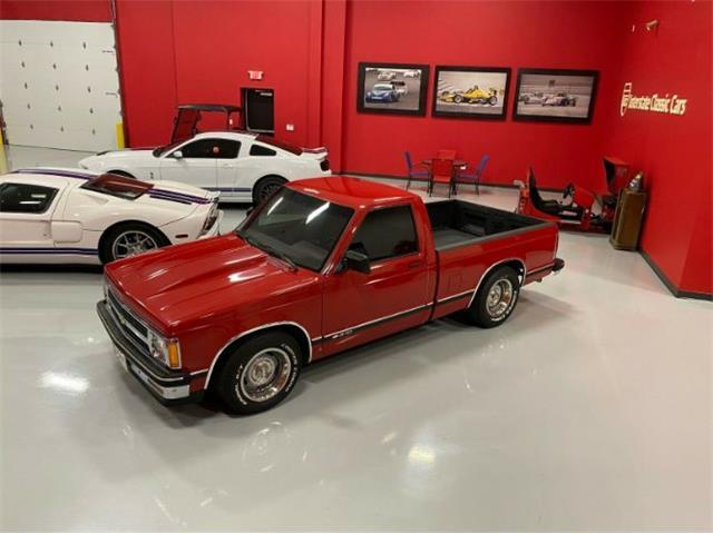 1991 Chevrolet S10 (CC-1428697) for sale in Cadillac, Michigan