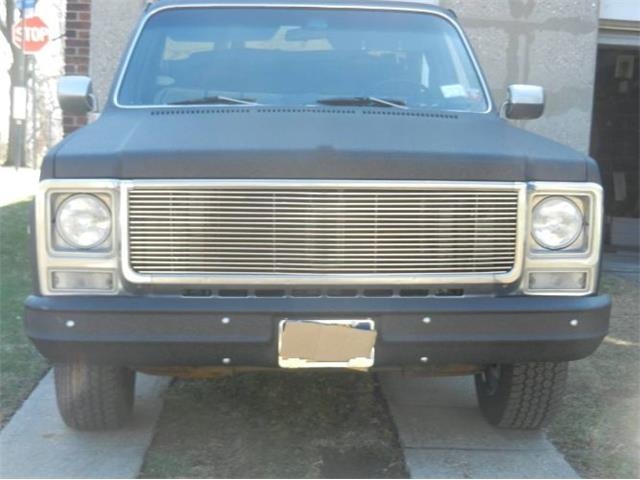 1980 Chevrolet C10 (CC-1428699) for sale in Cadillac, Michigan