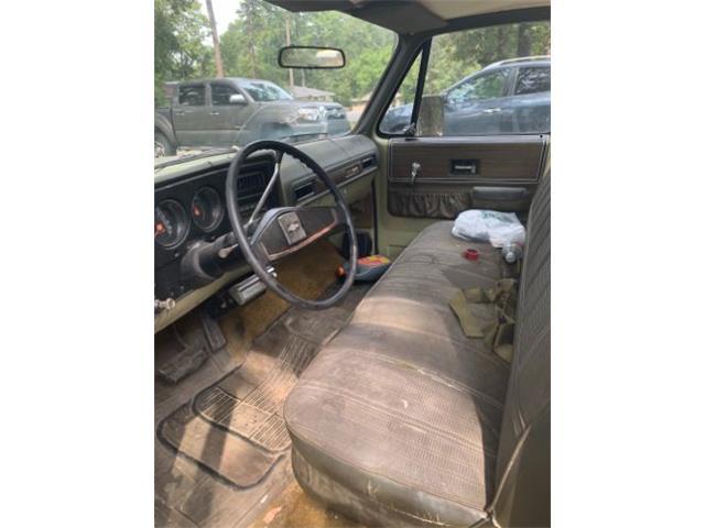 1973 Chevrolet Cheyenne (CC-1428742) for sale in Cadillac, Michigan