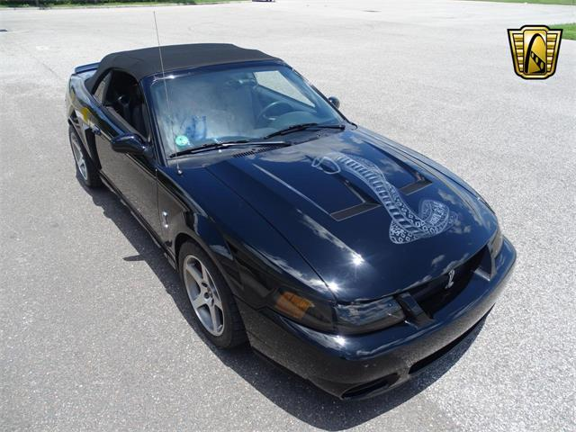 2003 Ford Mustang (CC-1428921) for sale in O'Fallon, Illinois