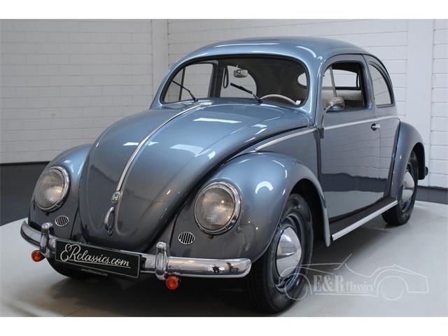 1955 Volkswagen Beetle (CC-1429790) for sale in Waalwijk, Noord Brabant