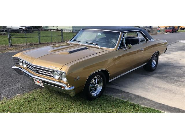 1967 Chevrolet Chevelle SS (CC-1431264) for sale in Thibodaux , Louisiana