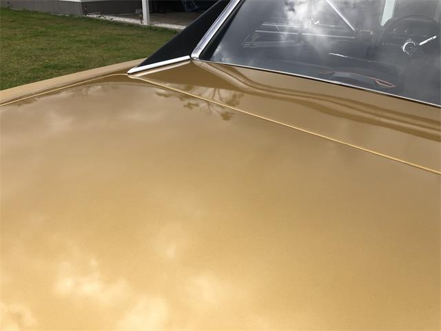 1967 Chevrolet Chevelle SS (CC-1431264) for sale in Thibodaux , Louisiana