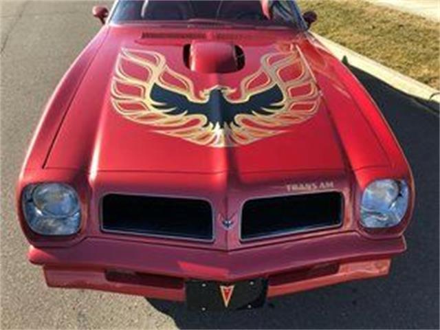 1976 Pontiac Firebird Trans Am (CC-1431412) for sale in Cadillac, Michigan