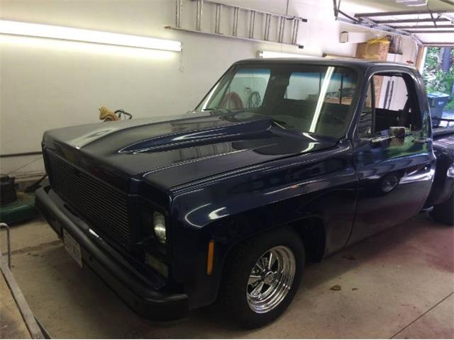 1973 Chevrolet C10 (CC-1431438) for sale in Cadillac, Michigan