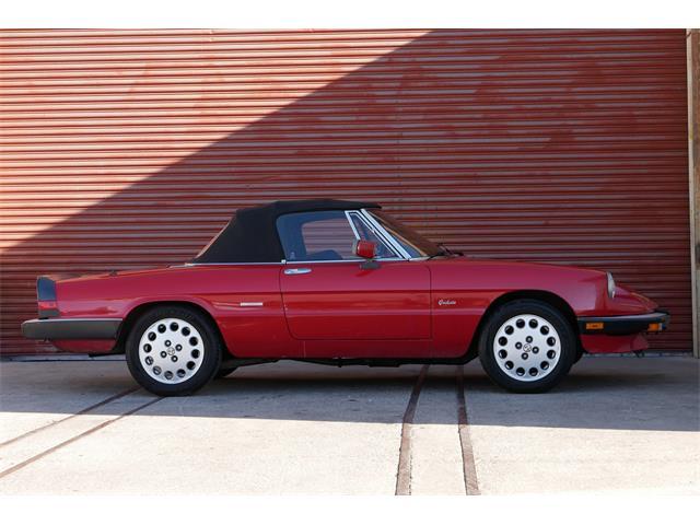 1988 Alfa Romeo Spider (CC-1431750) for sale in Reno, Nevada