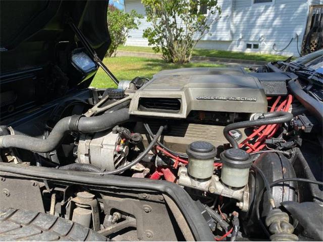 1984 Chevrolet Corvette (CC-1430202) for sale in Cadillac, Michigan