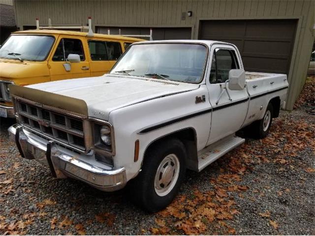 1977 GMC Sierra (CC-1432174) for sale in Cadillac, Michigan