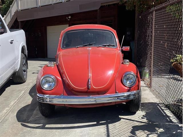 1971 Volkswagen Beetle (CC-1432328) for sale in Willow Creek, California