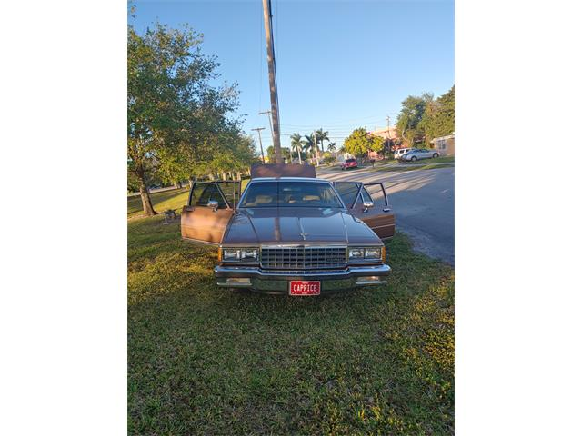 1987 Chevrolet Caprice (CC-1432516) for sale in West Park, Florida
