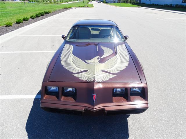 1981 Pontiac Firebird Trans Am (CC-1432609) for sale in O'Fallon, Illinois