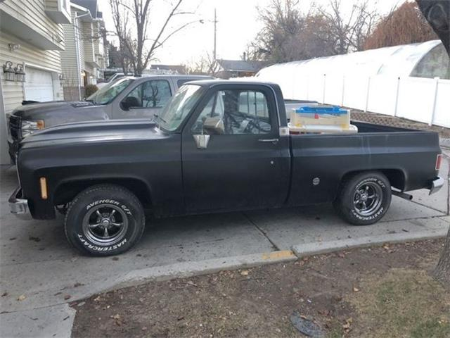 1976 Chevrolet C10 (CC-1433157) for sale in Cadillac, Michigan