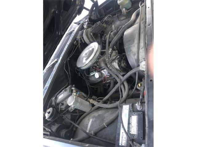1976 Chevrolet C10 (CC-1433157) for sale in Cadillac, Michigan