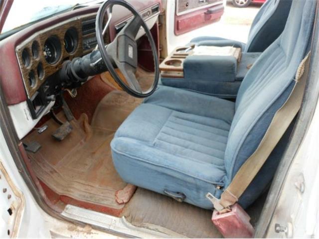 1976 Chevrolet C10 (CC-1433164) for sale in Cadillac, Michigan