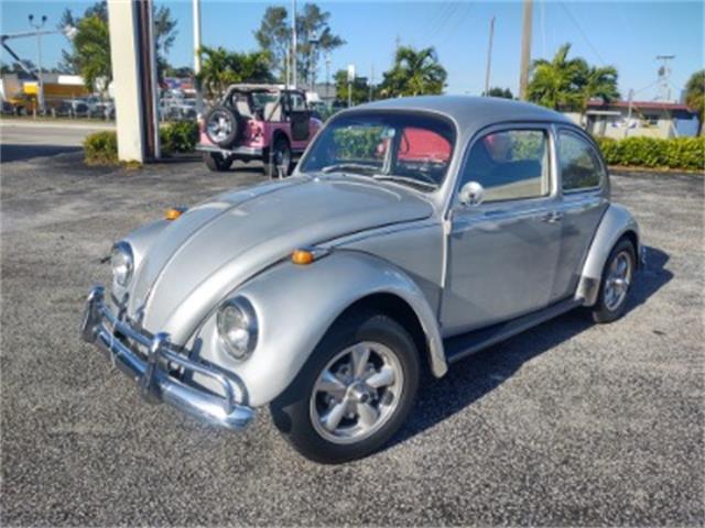 1967 Volkswagen Beetle (CC-1433610) for sale in Miami, Florida