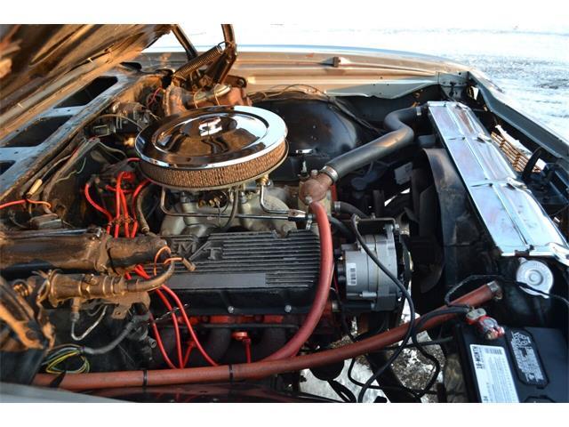 1969 Chevrolet Chevelle Malibu (CC-1433750) for sale in Ramsey, Minnesota