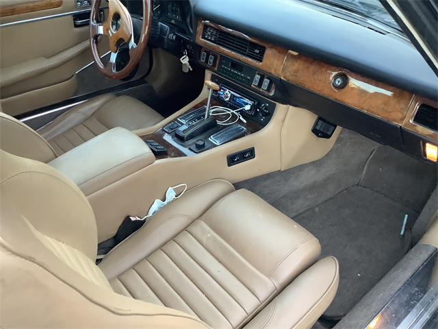 1989 Jaguar XJS (CC-1433774) for sale in Chestertown, Maryland