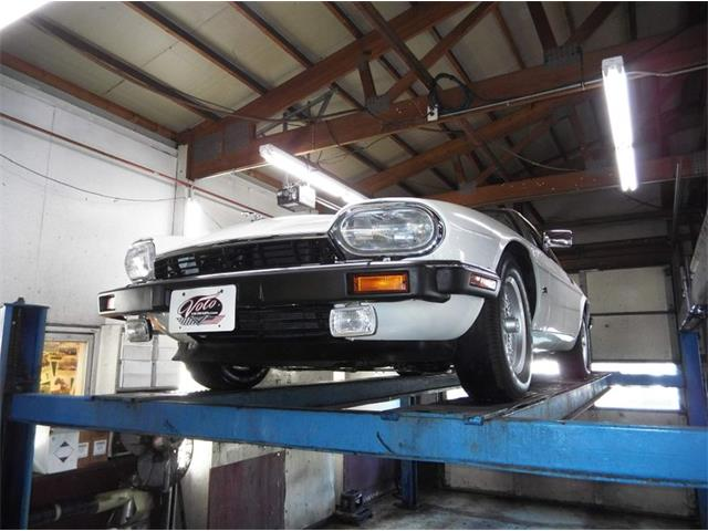 1993 Jaguar XJS (CC-1433904) for sale in Volo, Illinois