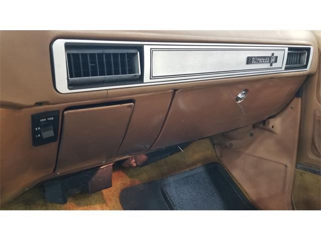 1979 Chevrolet Silverado (CC-1434522) for sale in Mankato, Minnesota