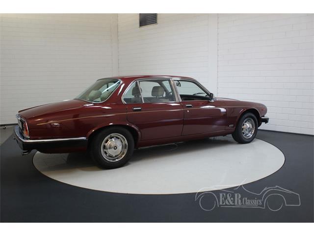 1986 Jaguar XJ6 (CC-1434666) for sale in Waalwijk, [nl] Pays-Bas