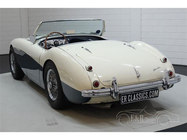 1956 Austin-Healey 100-4 BN2 (CC-1434668) for sale in Waalwijk, Noord Brabant