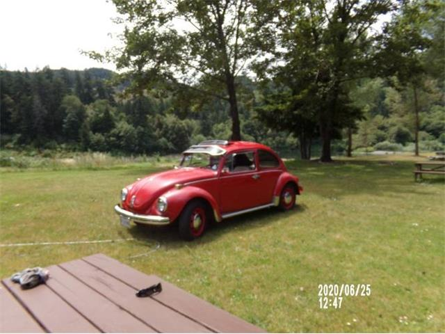 1971 Volkswagen Beetle (CC-1434851) for sale in Cadillac, Michigan