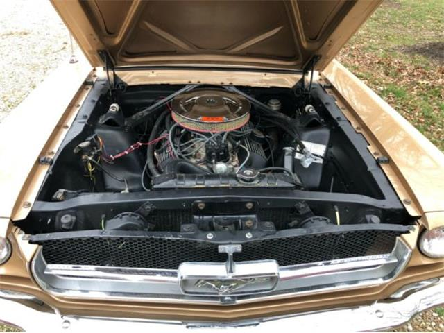 1965 Ford Mustang (CC-1430510) for sale in Cadillac, Michigan