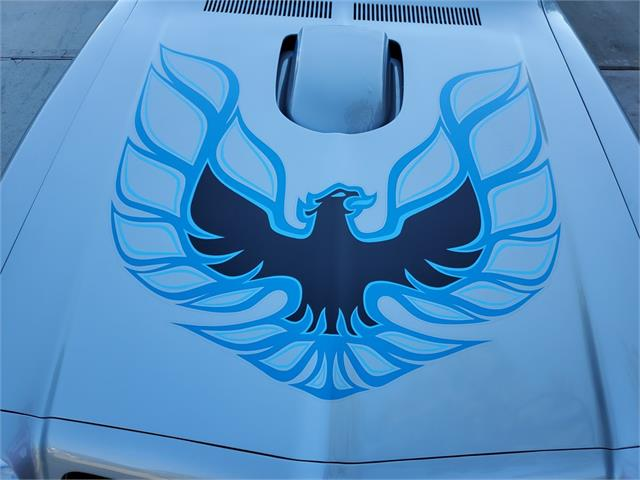 1976 Pontiac Firebird Trans Am (CC-1435346) for sale in Willis, Texas